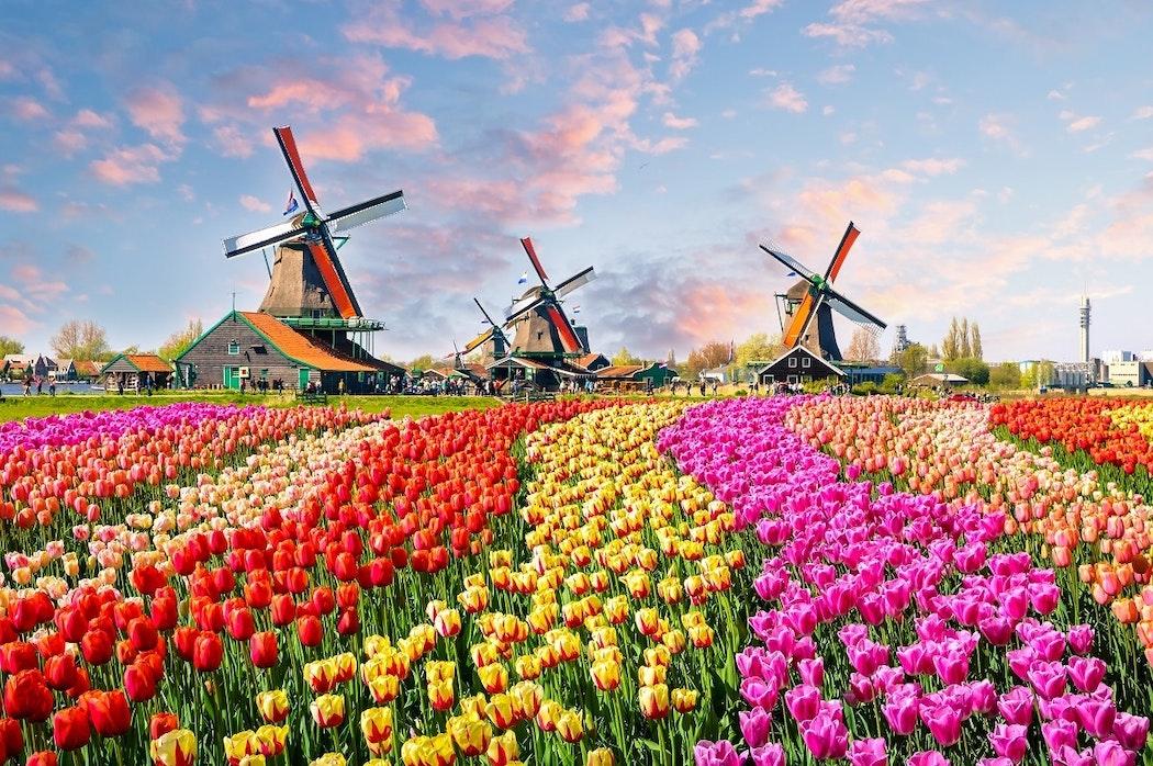 Digitale Holland Pass Wallet mobiel toeristen Holland